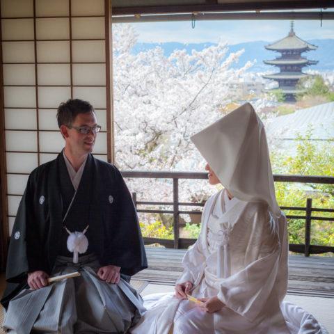 桜と八坂の塔を背景に撮影された新郎新婦