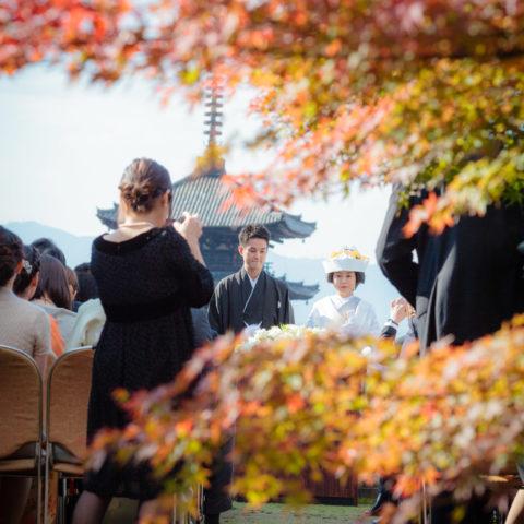 紅葉と八坂の塔を背景とした結婚式の様子