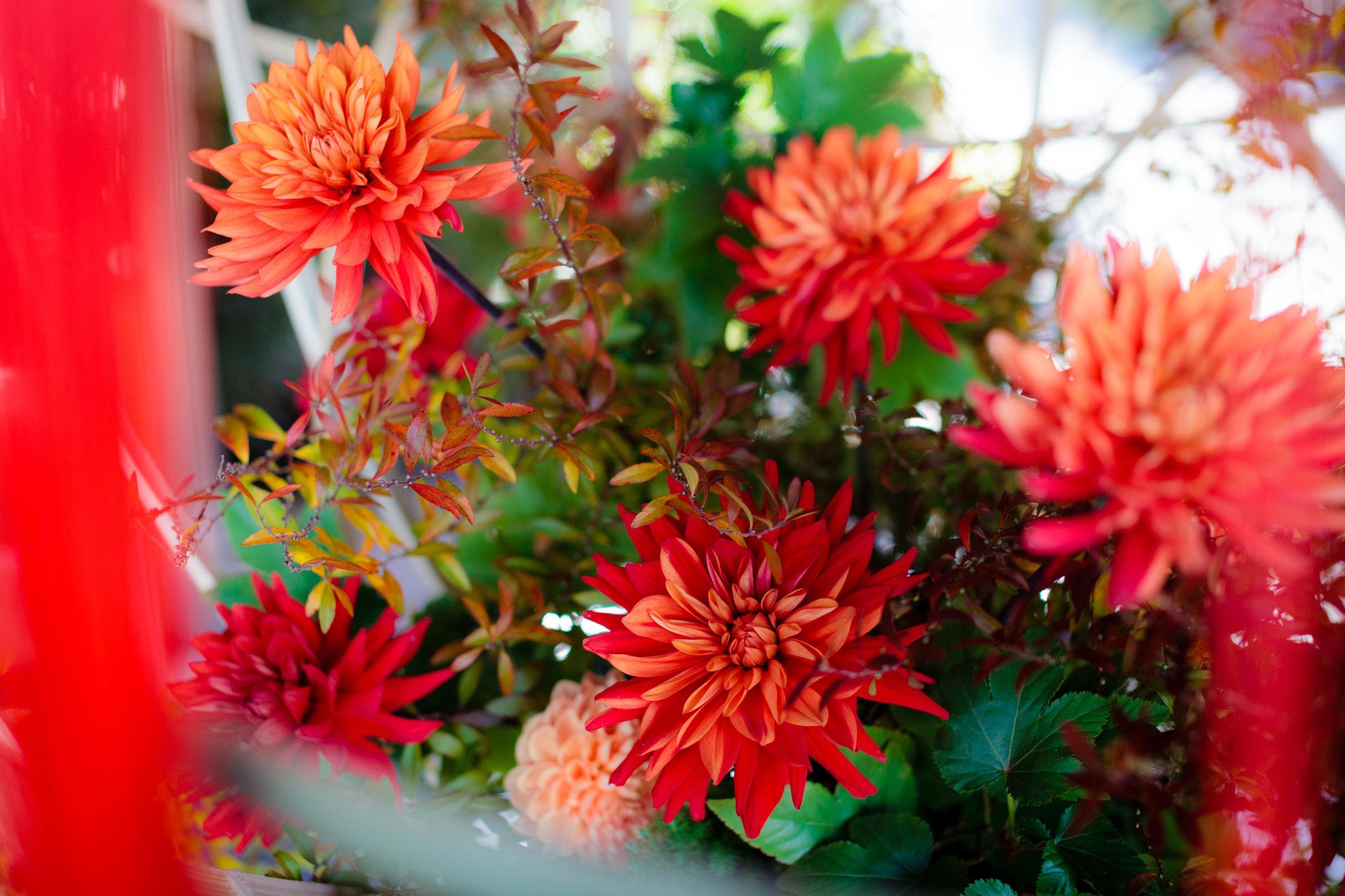 赤色を基調とした装花