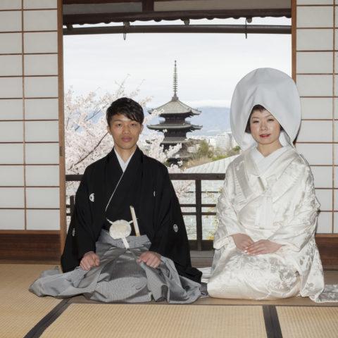 八坂の塔と桜を背景に撮影された新郎新婦