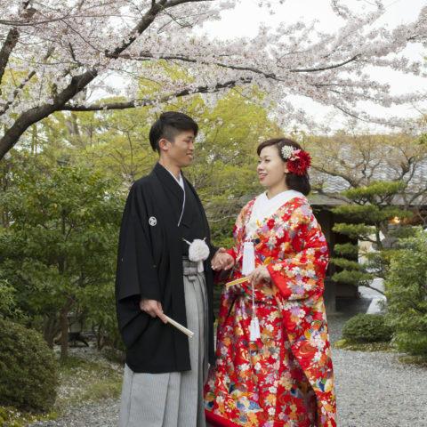 桜の木の下で撮影された新郎新婦