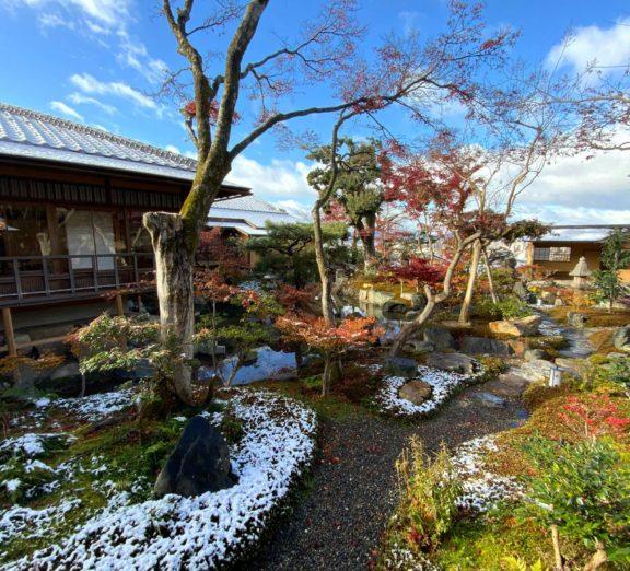 雪化粧された庭園